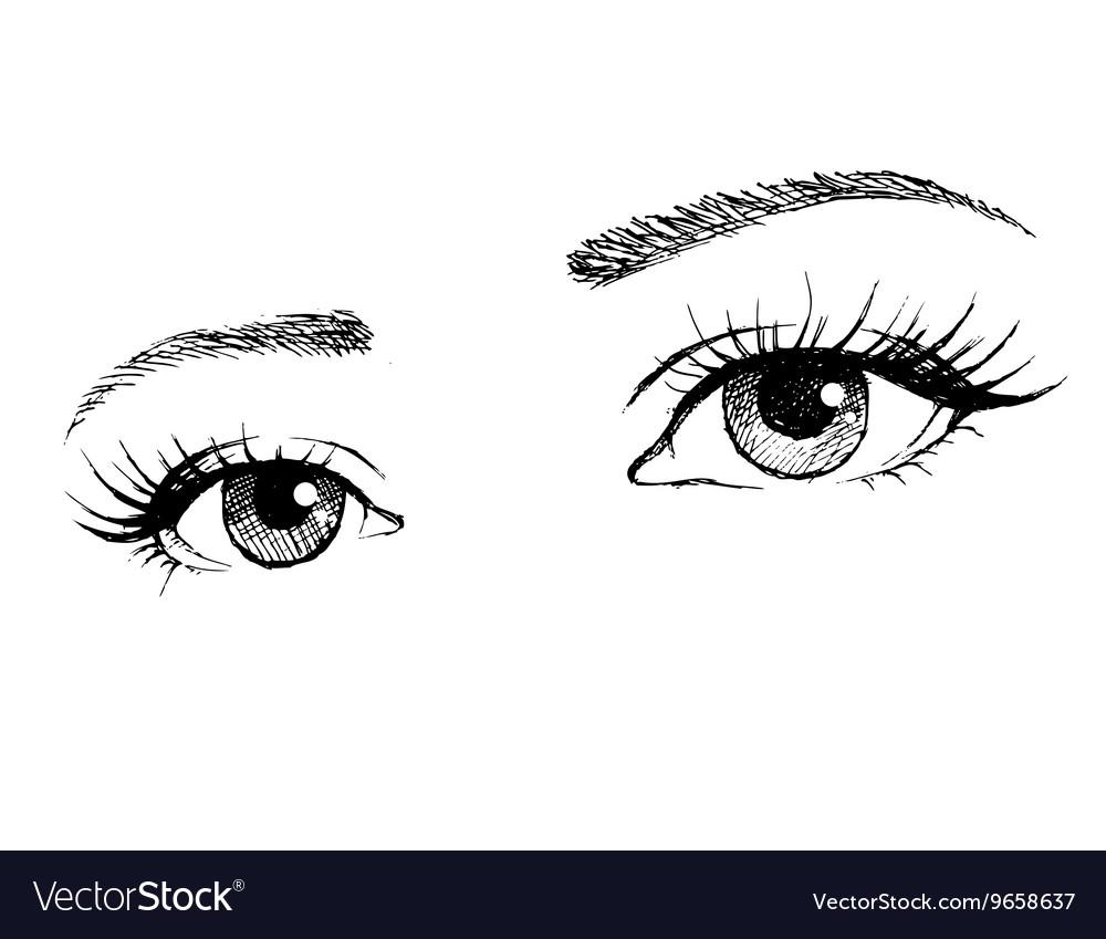 Beautiful female eye with long eyelashes vector image