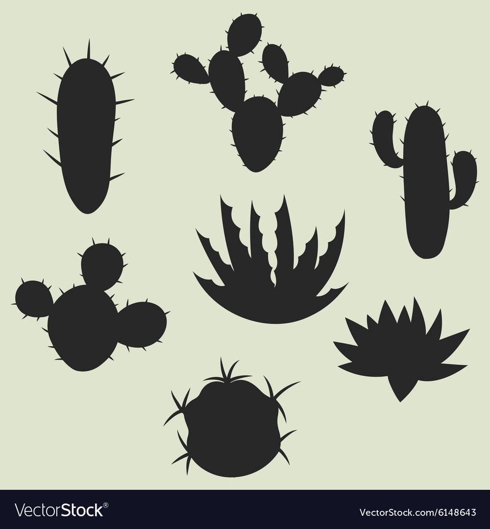 Collection of stylized cactuses and plants vector image