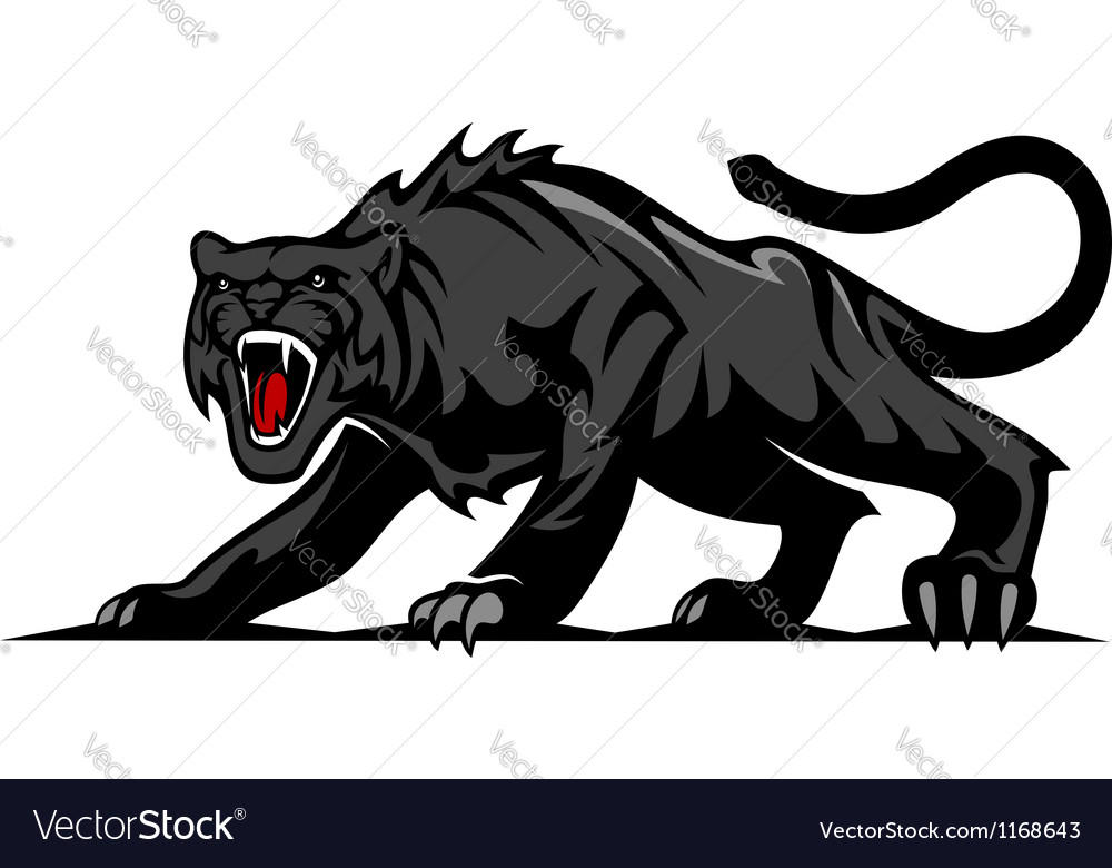 Danger black panther vector image