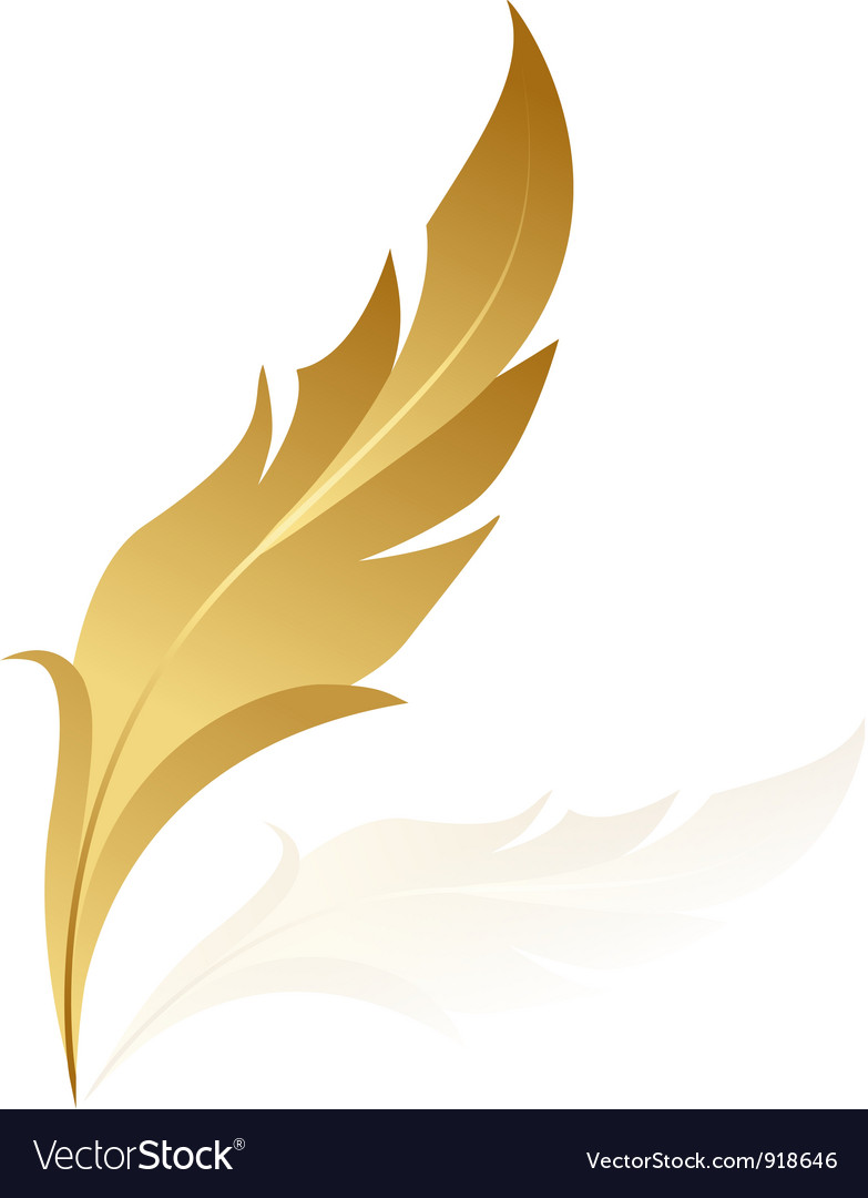 Gold feather vector image
