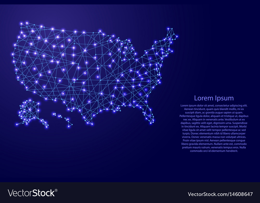Map of usa from polygonal blue lines vector image