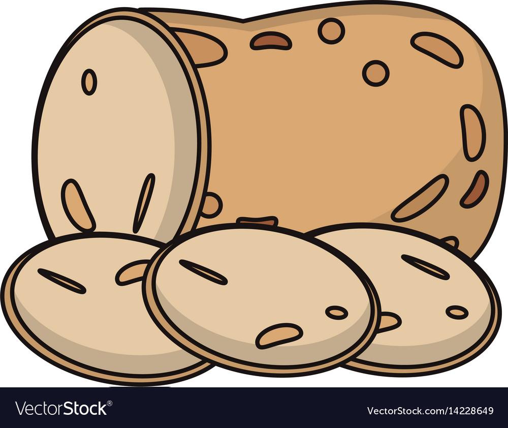Potato food fresh image vector image
