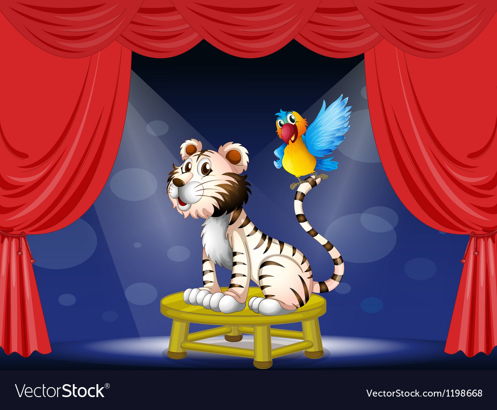 A parrot standing at the tail of a tiger vector image