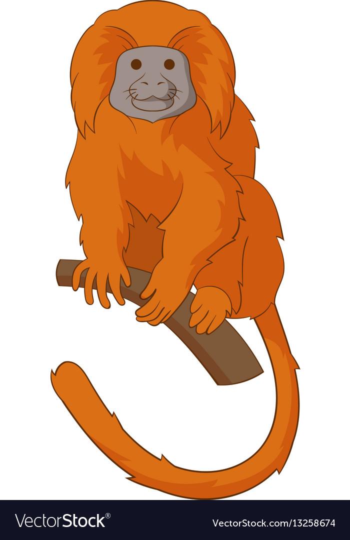 Golden lion tamarin icon cartoon style vector image