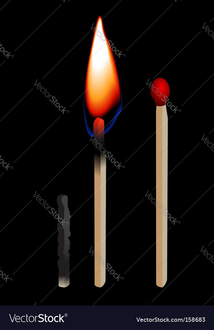 Burning matchstick vector image