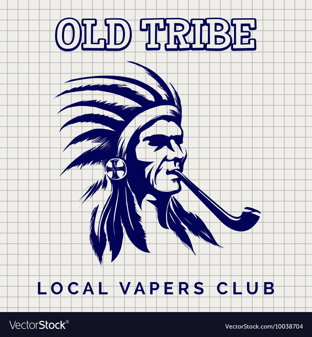 Native american indian with pipe vector image