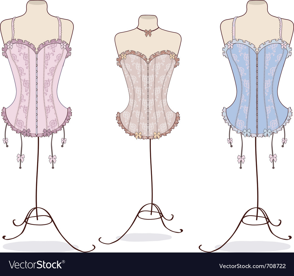Variety of sexy vintage corsets vector image