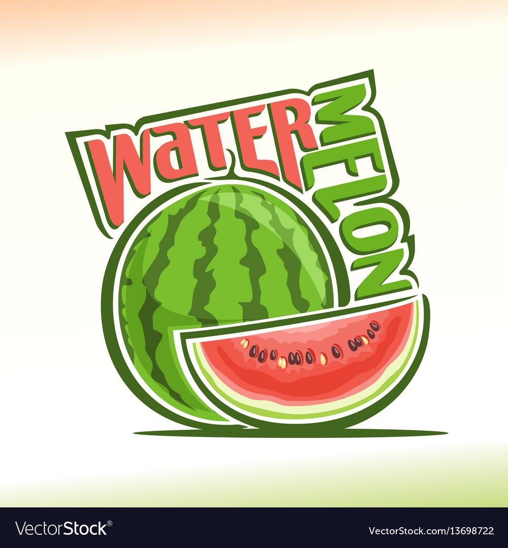 Watermelon still life vector image
