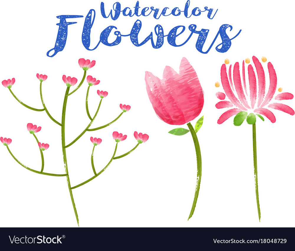 Watercolor flowers with three different types of vector image kristyandbryce Images
