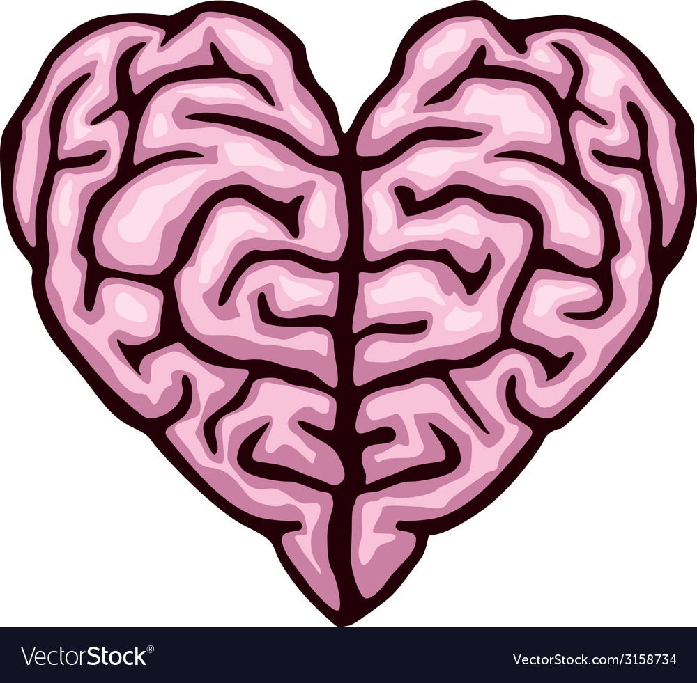 Brain heart vector image