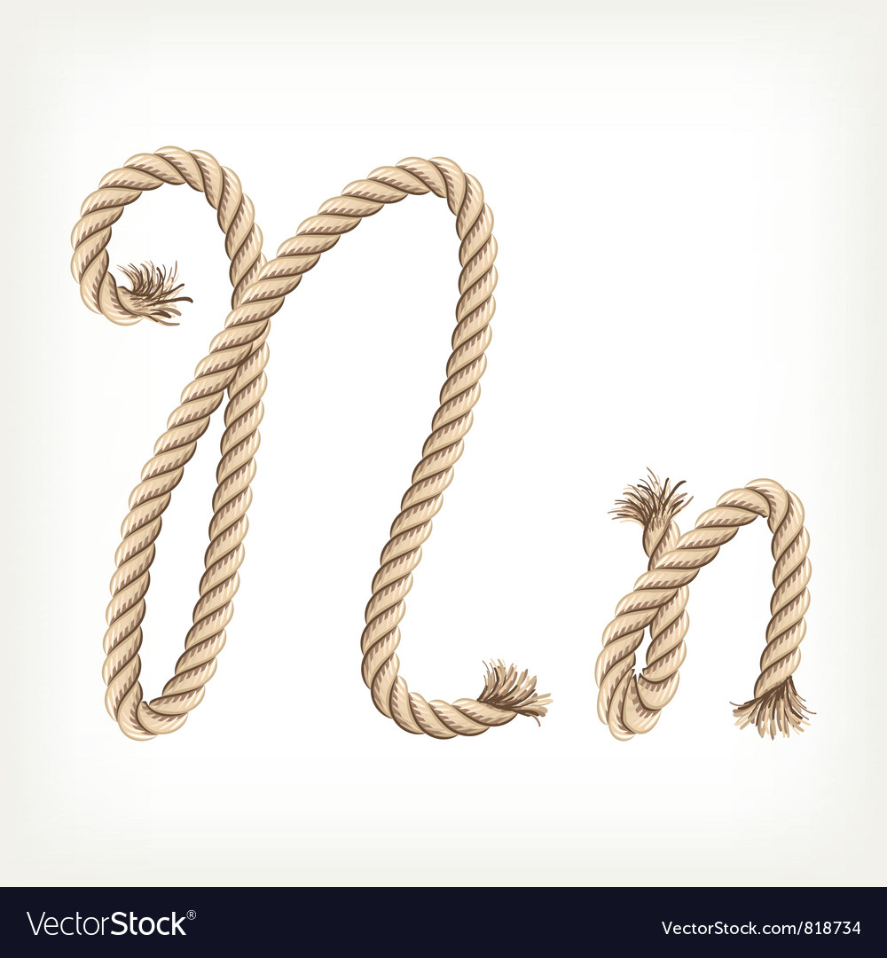 Rope alphabet Letter N vector image