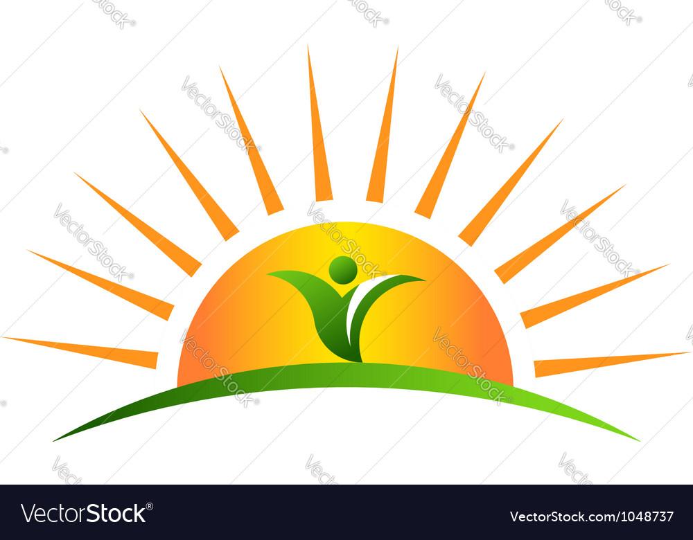 Plant in sunrise logo vector image