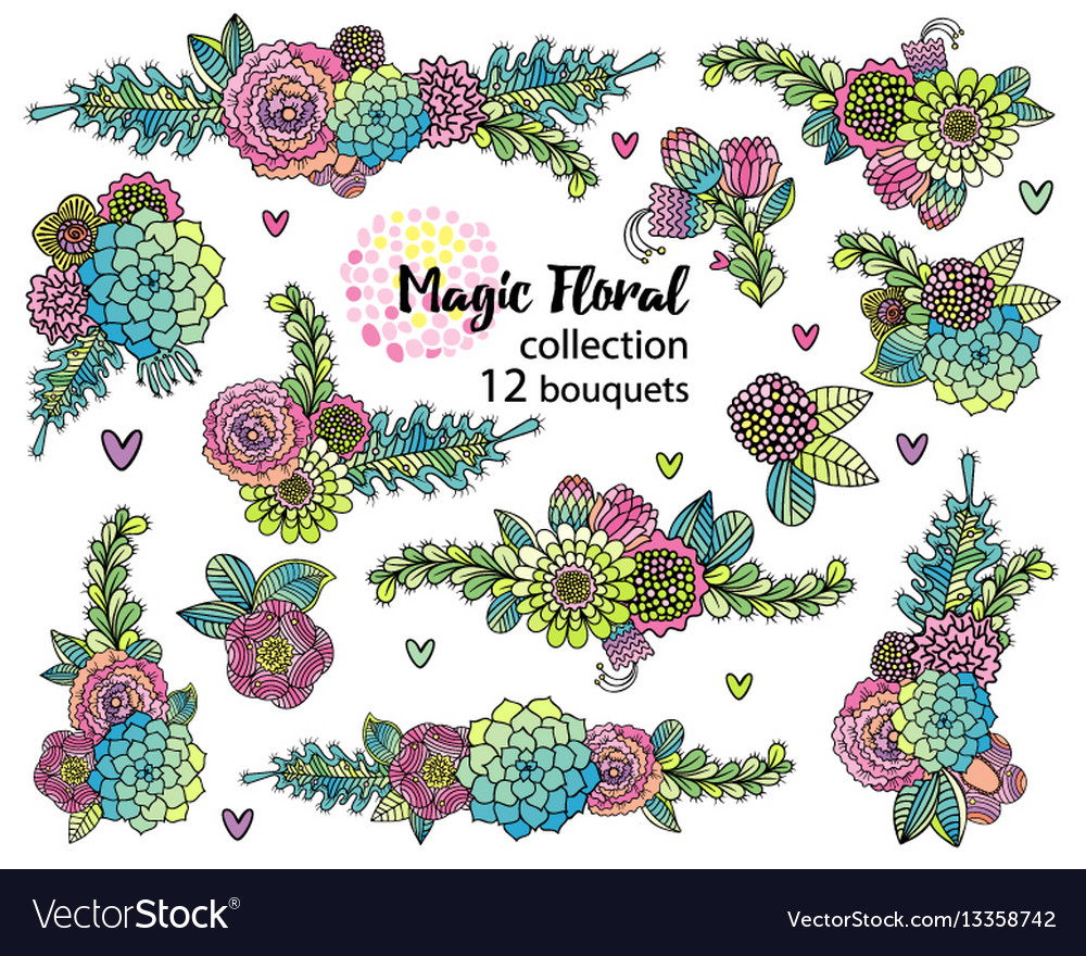 Flower set with hand drawn succulents vector image