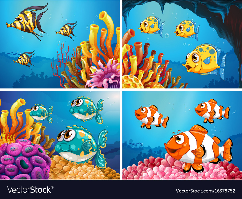 Fish swim under the ocean vector image
