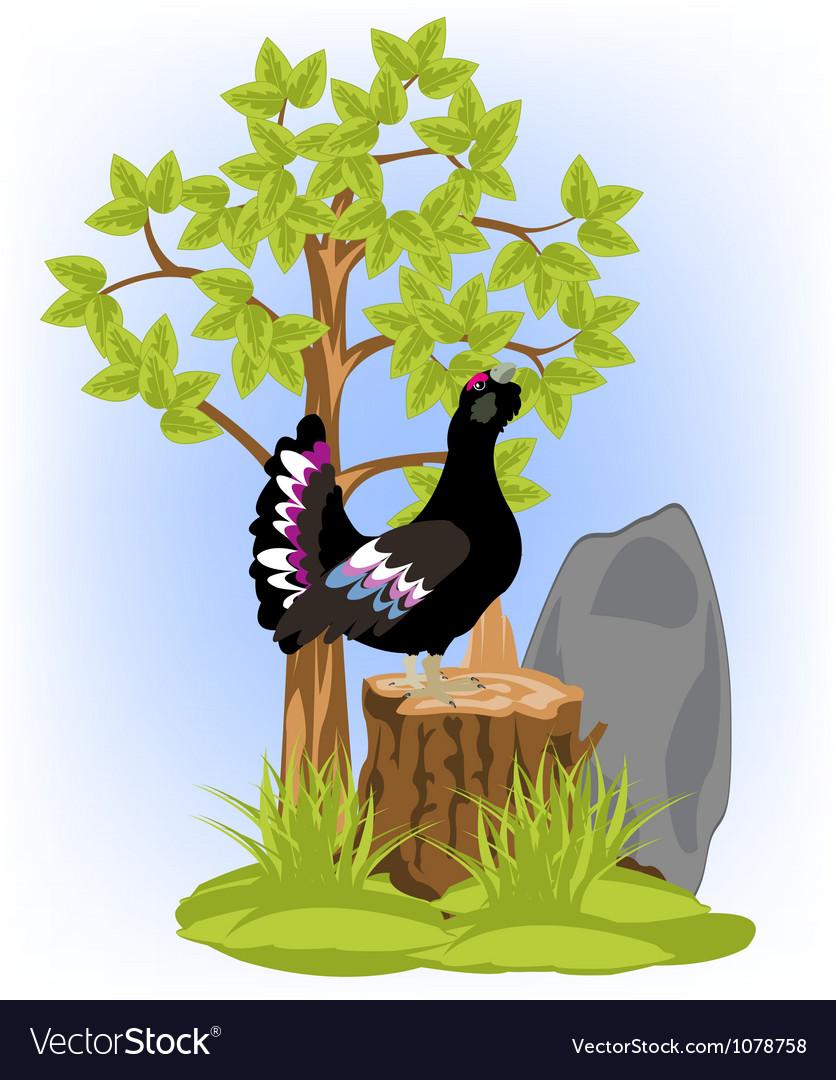 Black grouse on hemp vector image