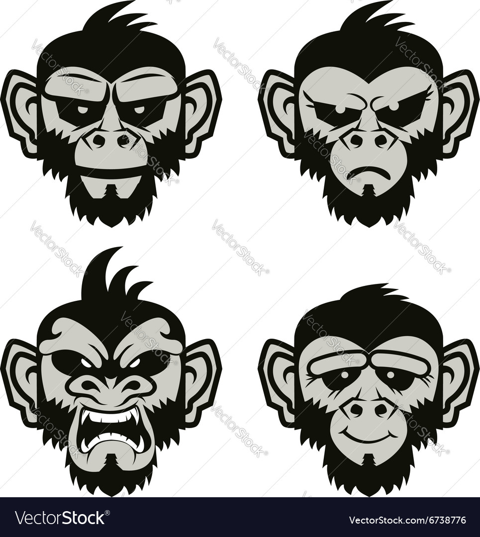 Monkeys vector image