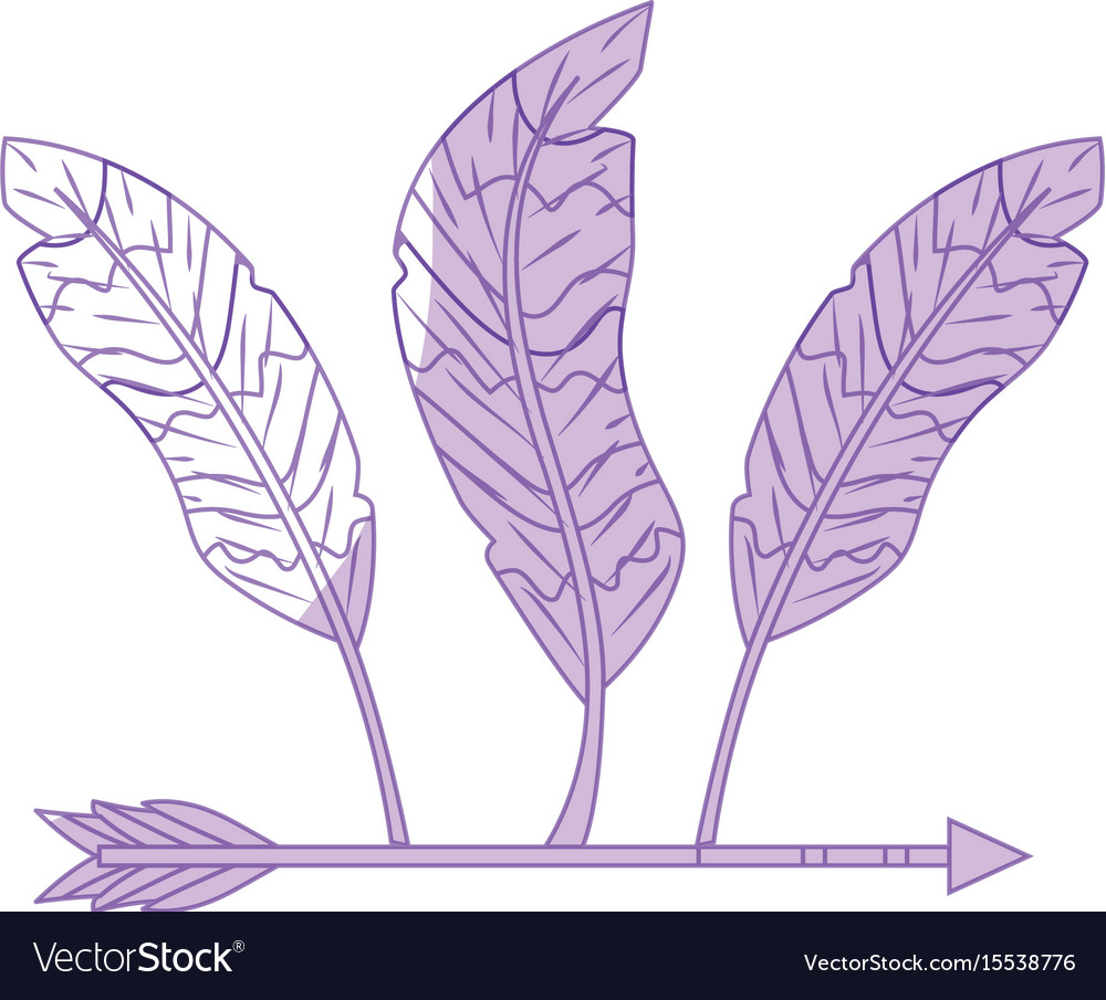 Silhouette nice arrow with feather design vector image