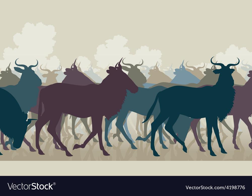 Wilderbeest herd vector image