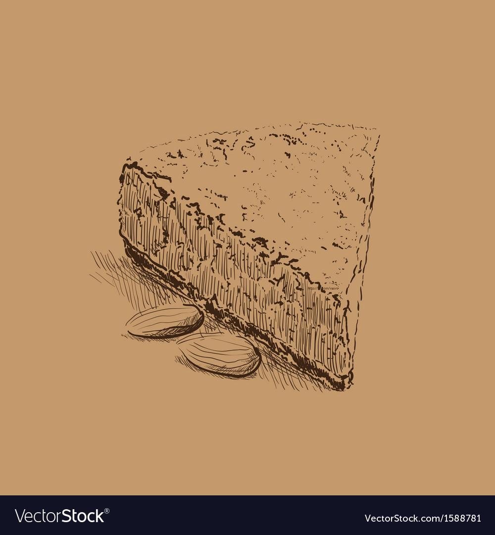 Cake sketch vector image