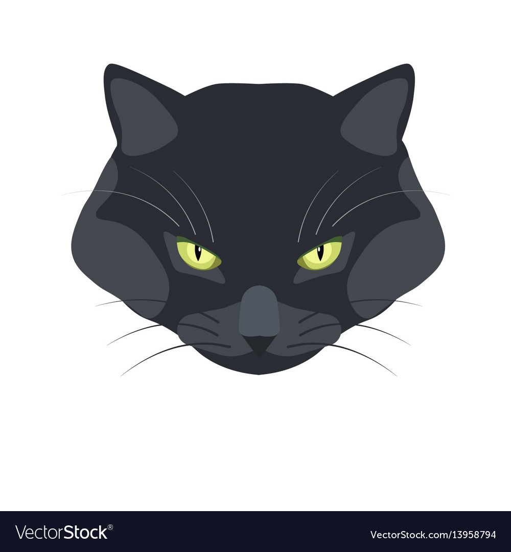 Bombay black cat breed close-up portrait on white vector image