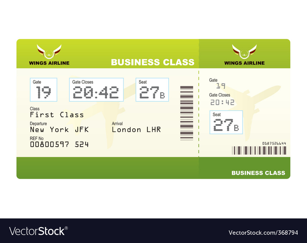 Plane tickets business class green vector image