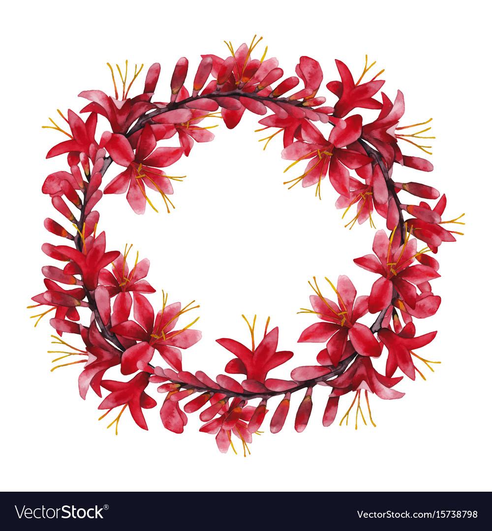 Watercolor crocosmia wreath vector image