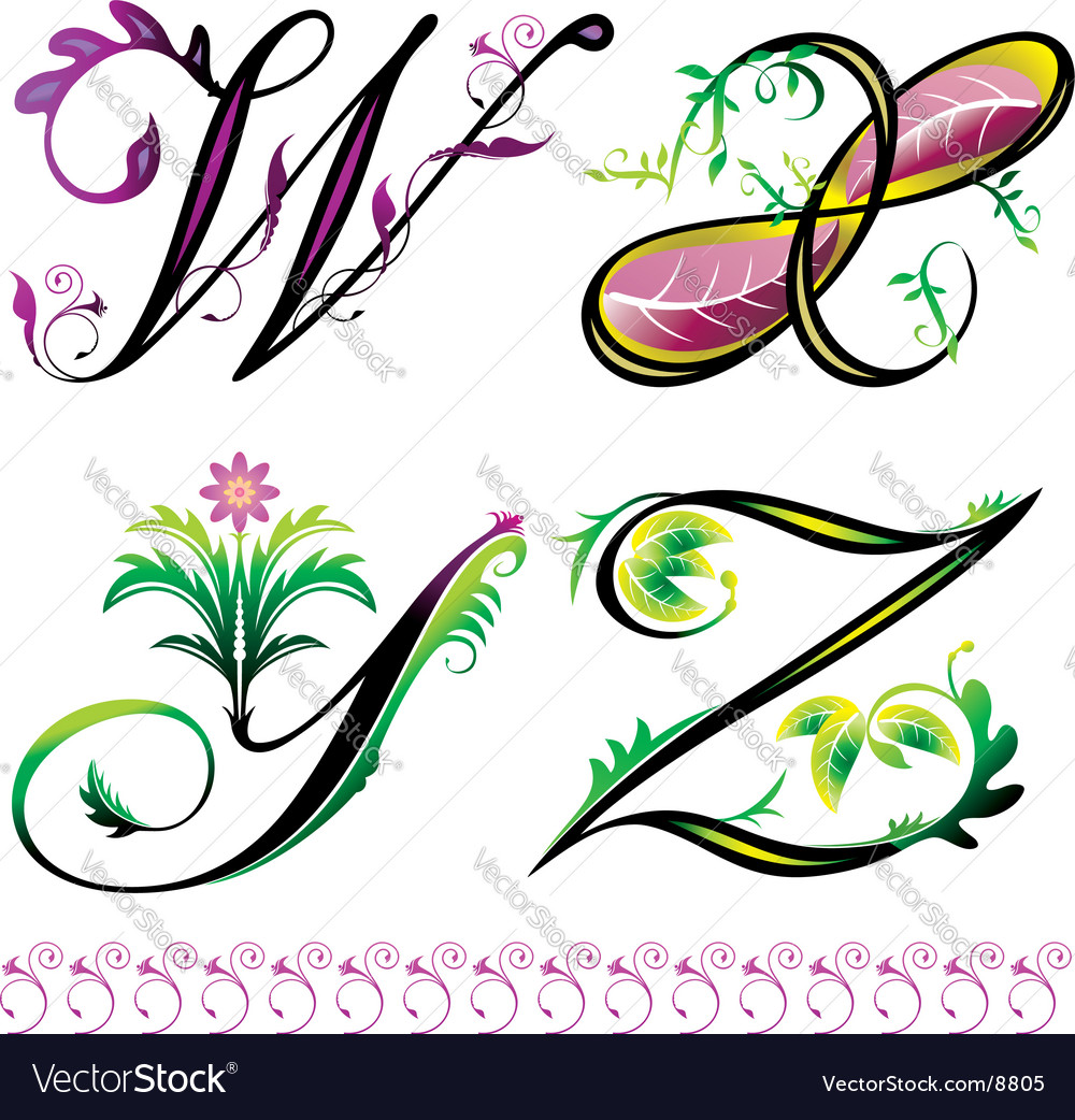 Elements w to z vector image