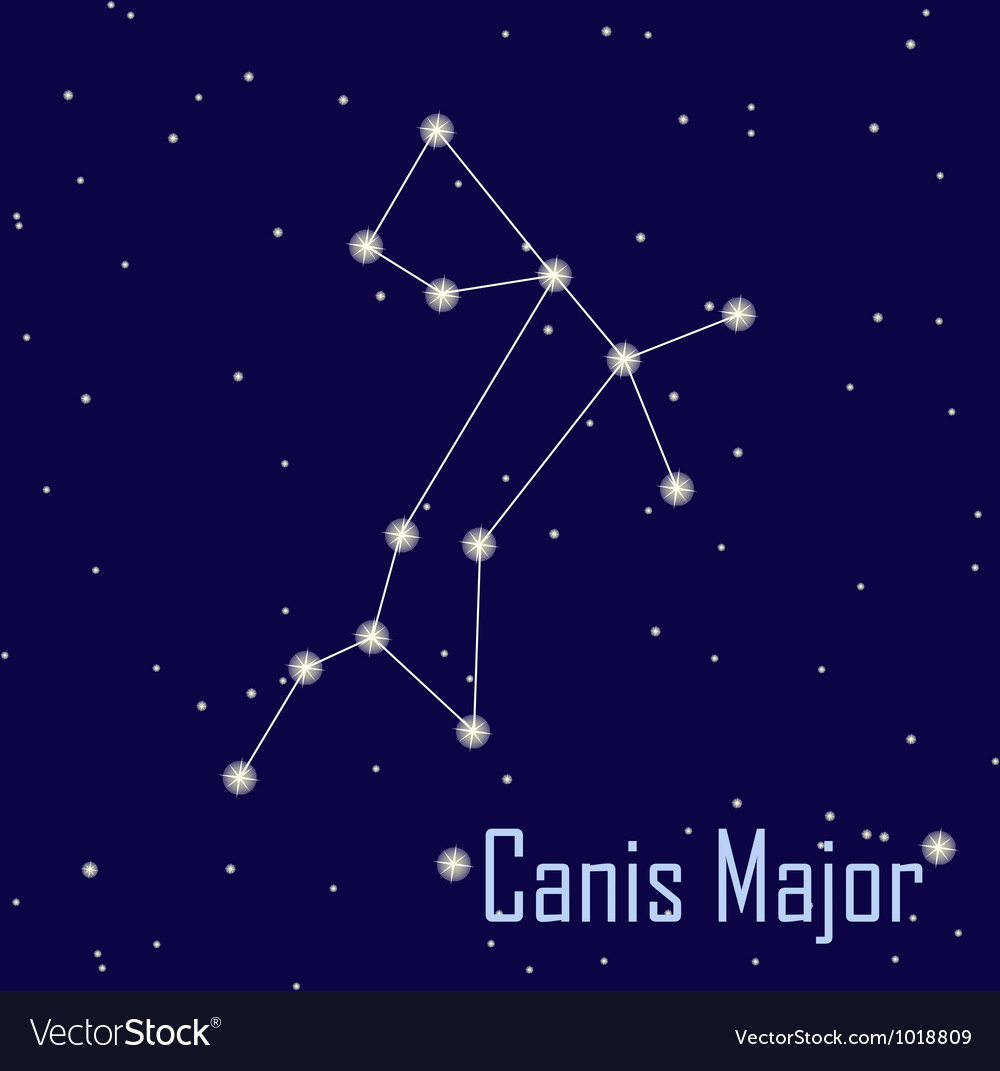The Constellation Canis Major Star Night Vector Free Download Stock Image