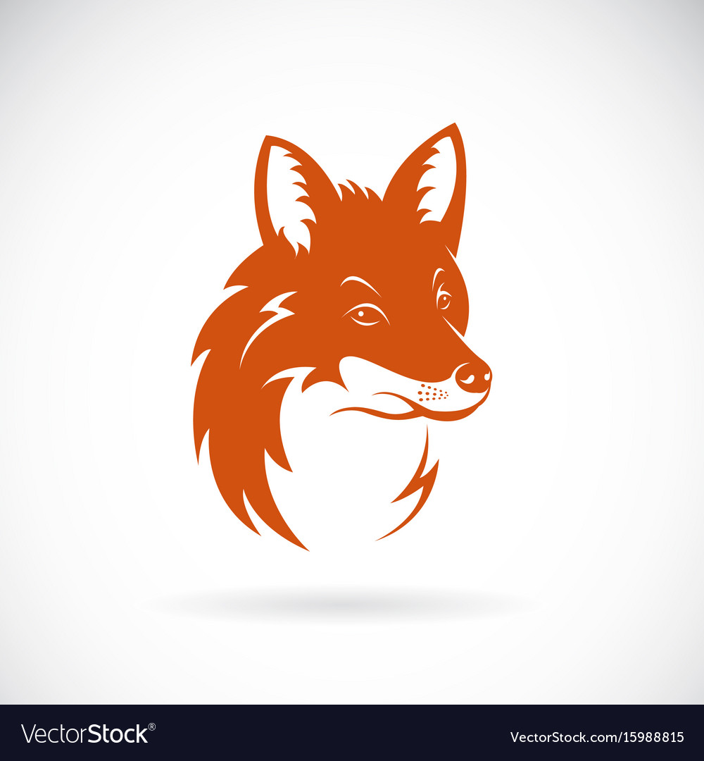 Fox head on white background wild animals vector image