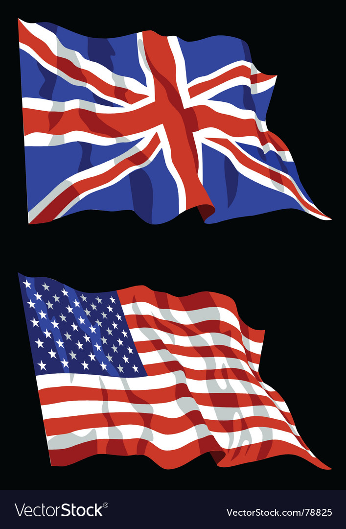British american flags vector image