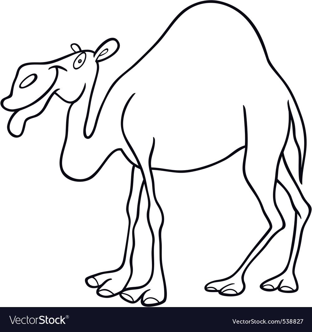 cartoon camel royalty free vector image vectorstock