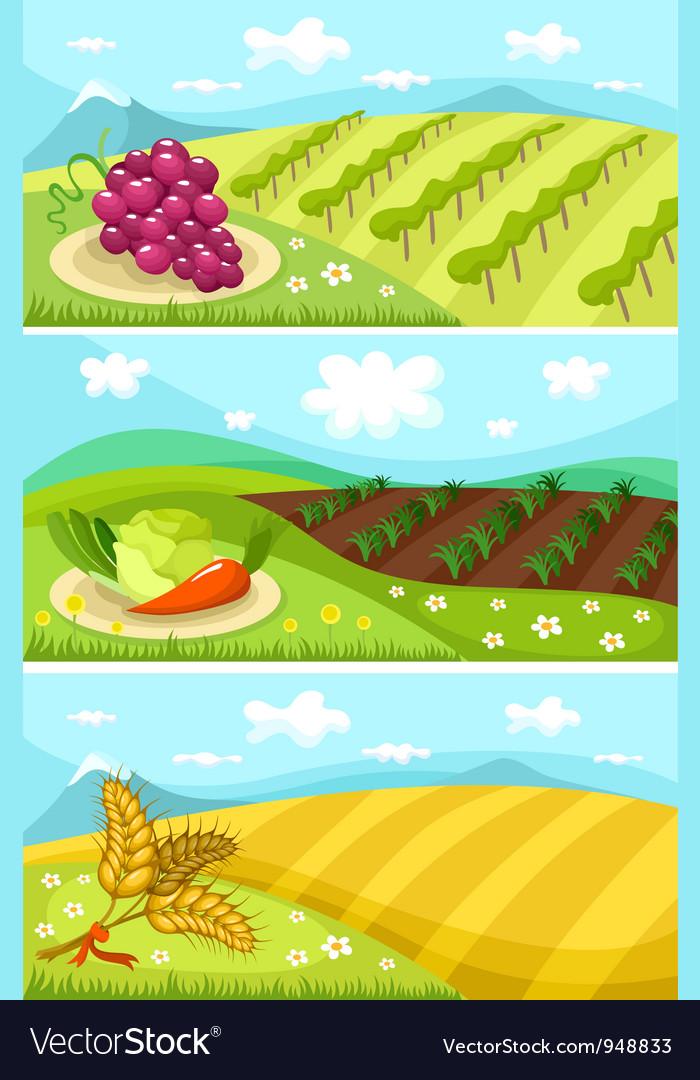 Harvest card vector image