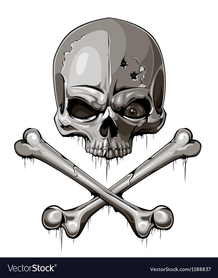 Decrepit skull with two crossed bones vector image