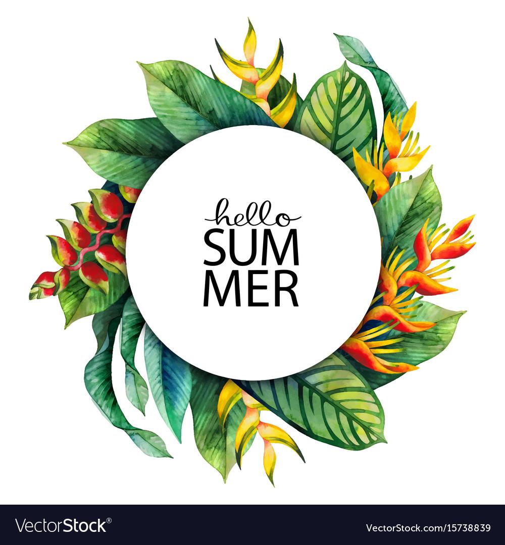 Watercolor heliconia design vector image