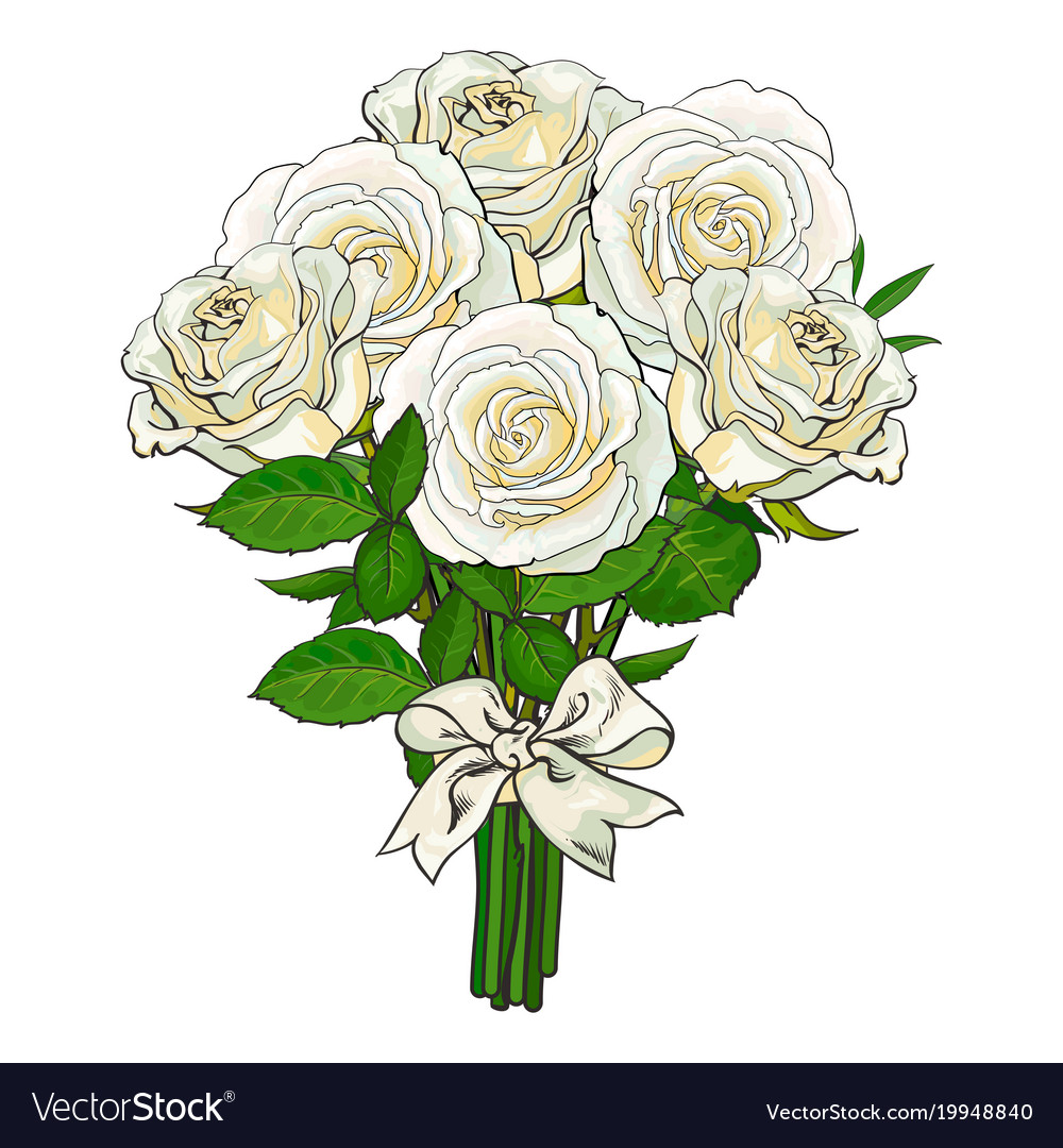 Bouquet bunch of white roses tied with ribbon vector image izmirmasajfo Images