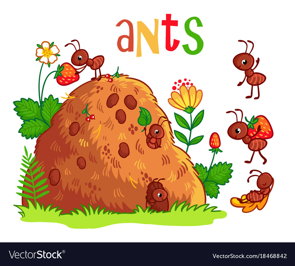 how to kill ants in anthill