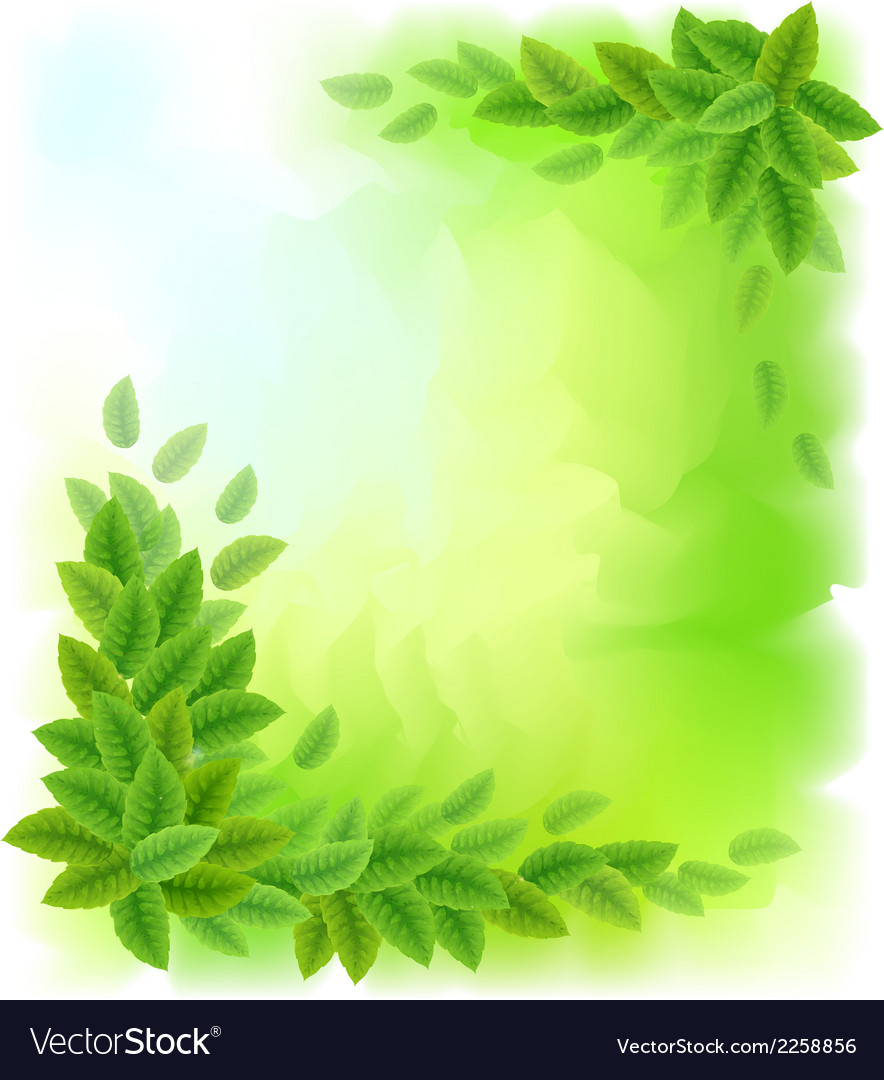 Sunny background with green leaves vector image