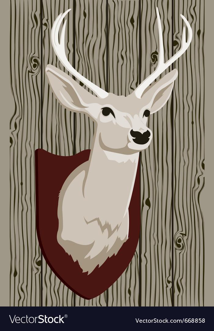 Stuffed deer head vector image