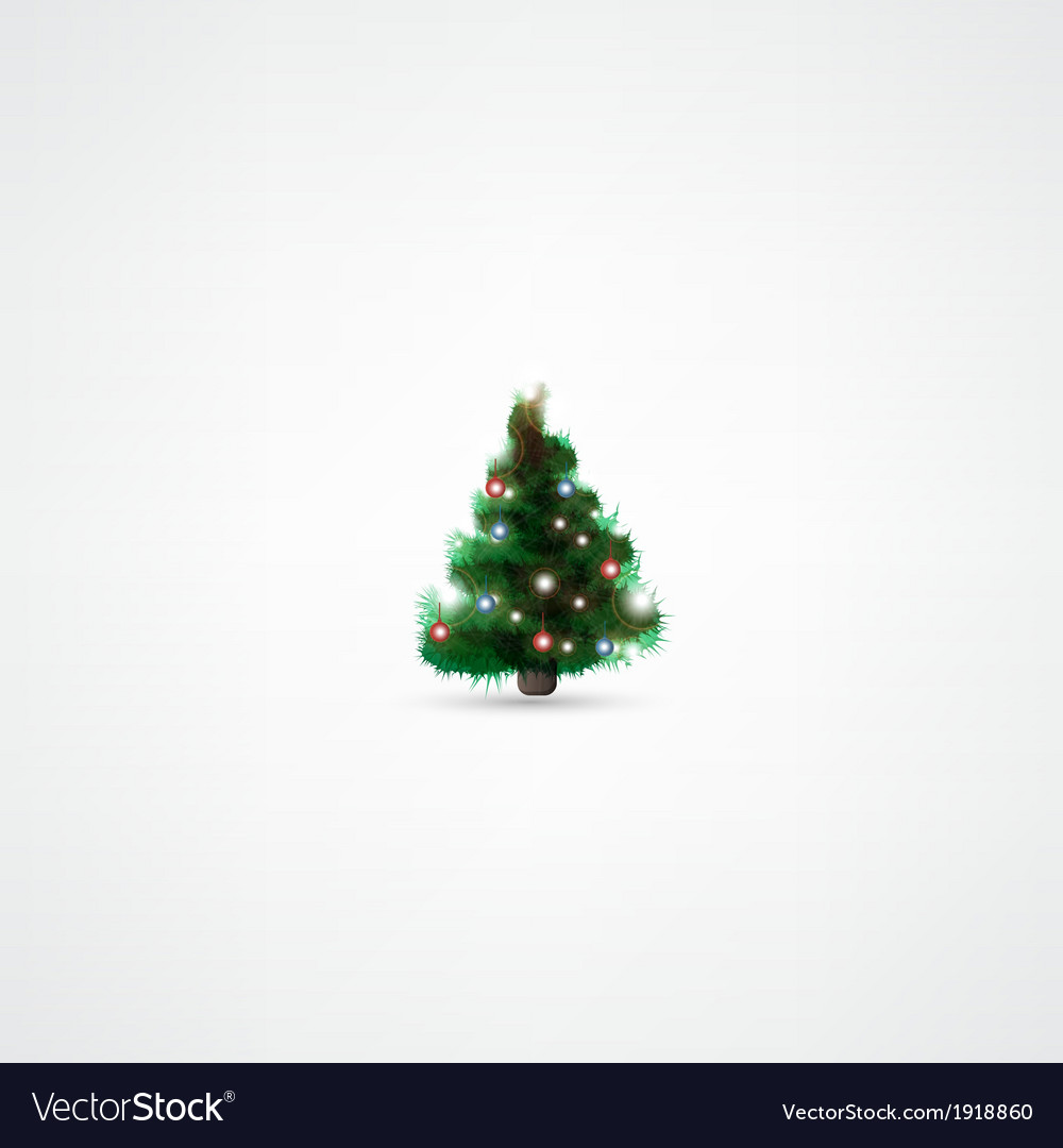 fir tree for christmas on white background vector image