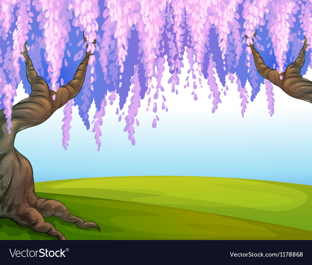 Big trees in the park vector image