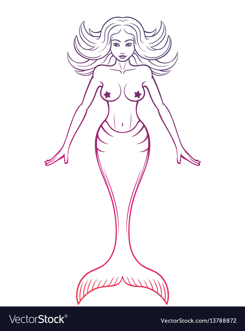 Mermaid outline on white vector image