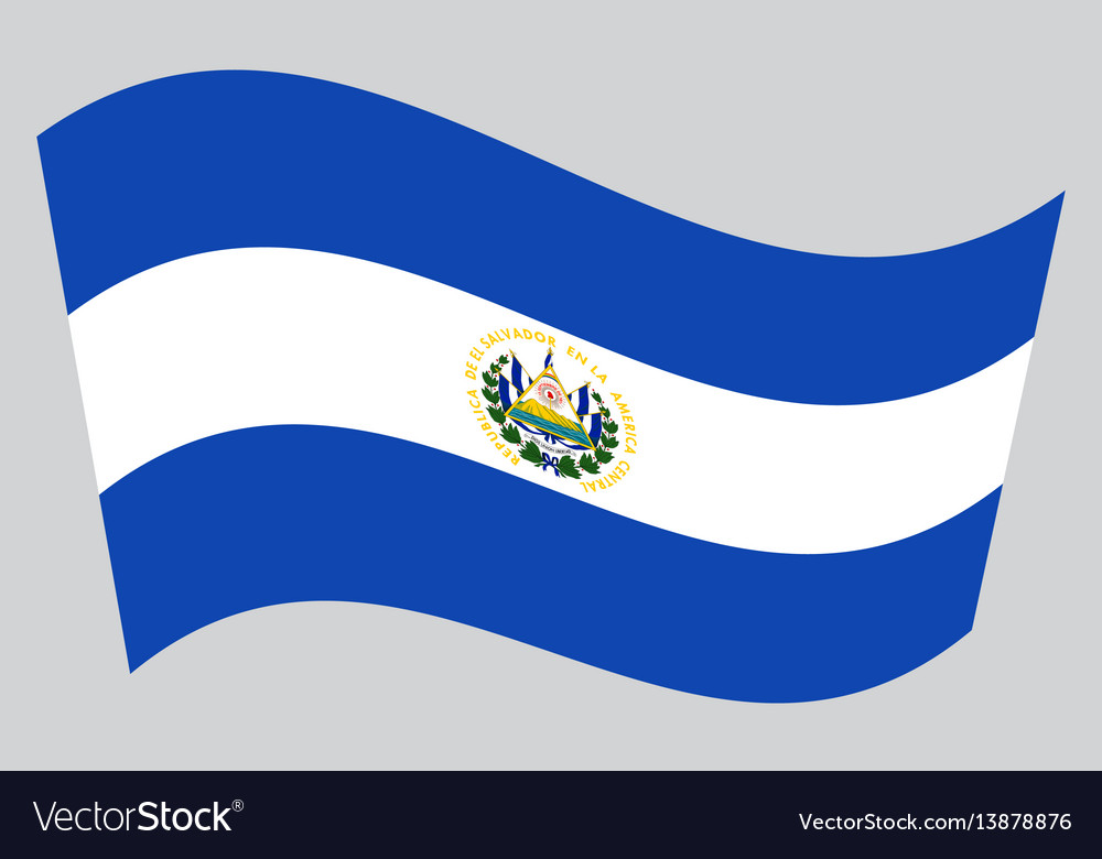 Flag of el salvador waving on gray background vector image