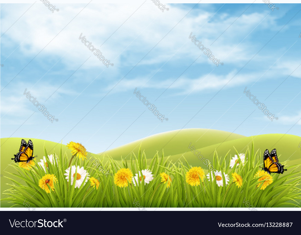 Beautiful nature landscape background with vector image