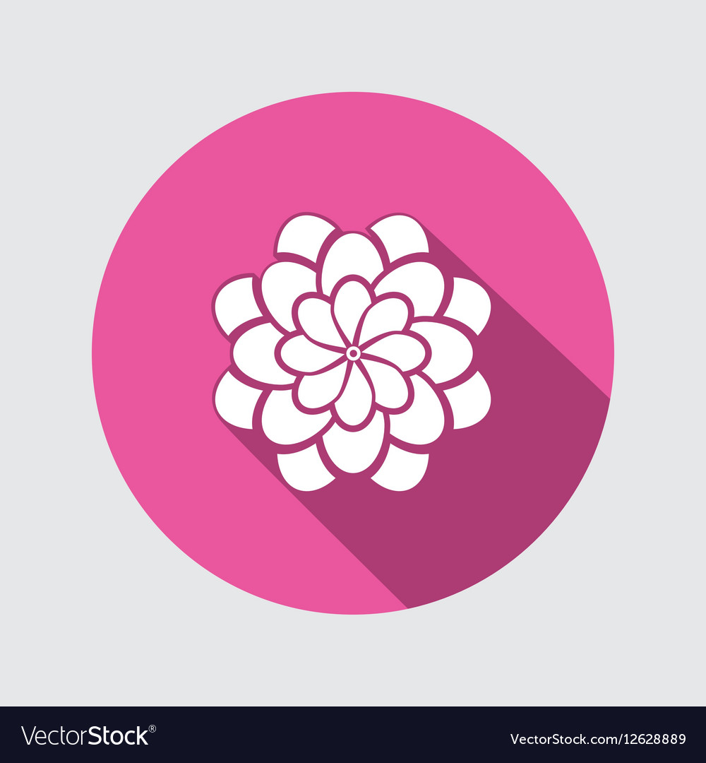 Flower icon dahlia aster daisy chrysanthemum vector image izmirmasajfo Image collections