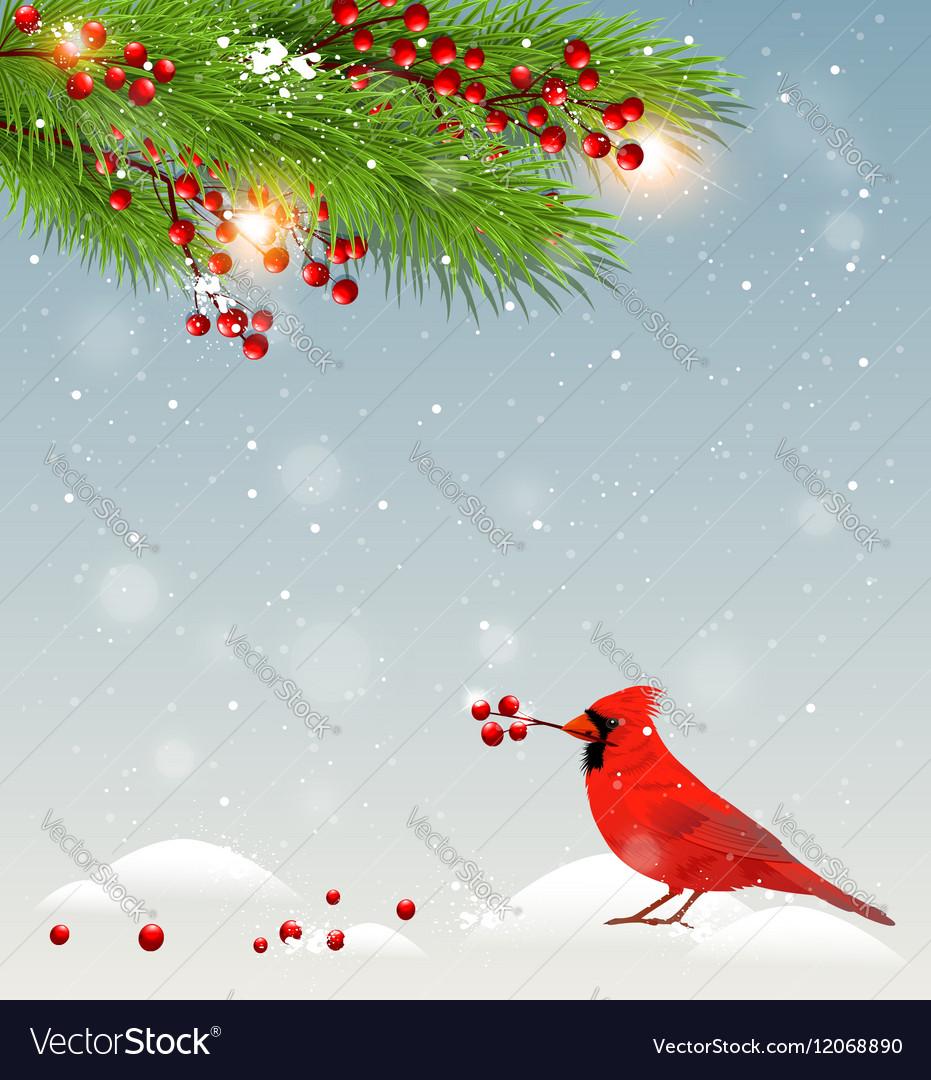 Winter landscape with cardinal bird vector image