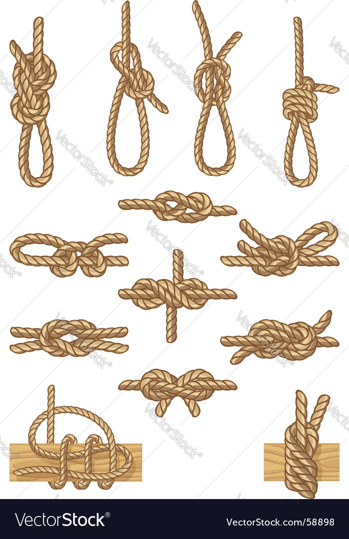 Boating knots vector image