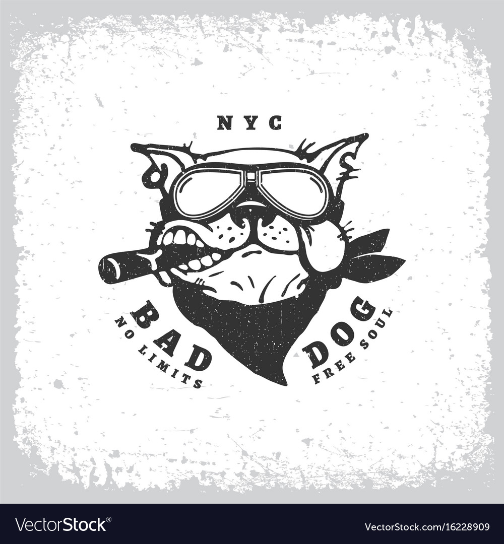 Bad dog vector image