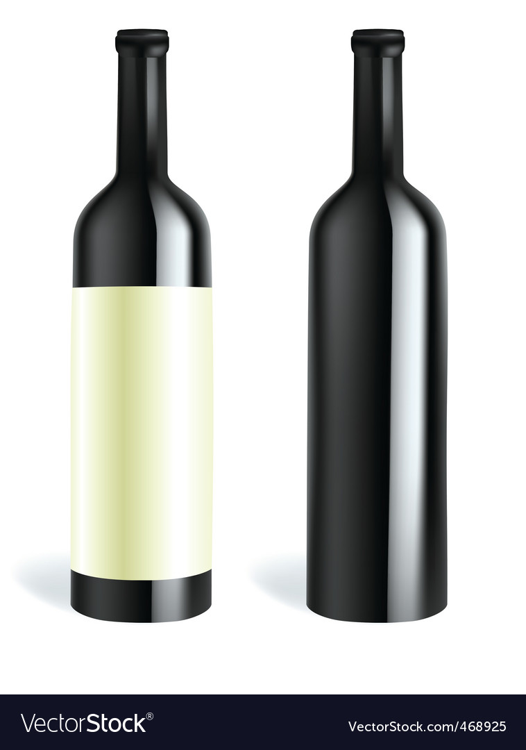 Bottle2 vector image
