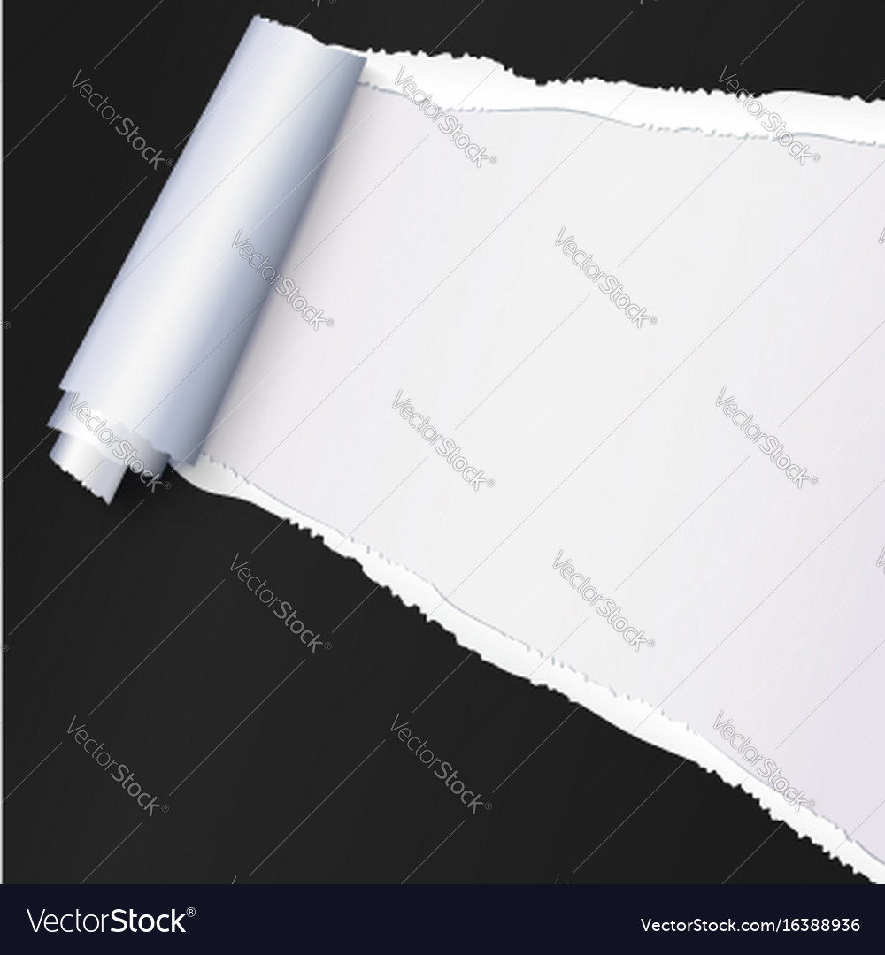 Realistic black torn open paper with space for vector image