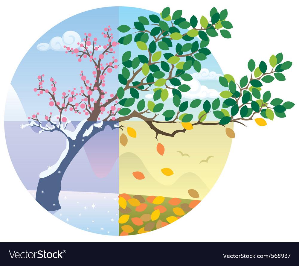 Seasons cycle vector image
